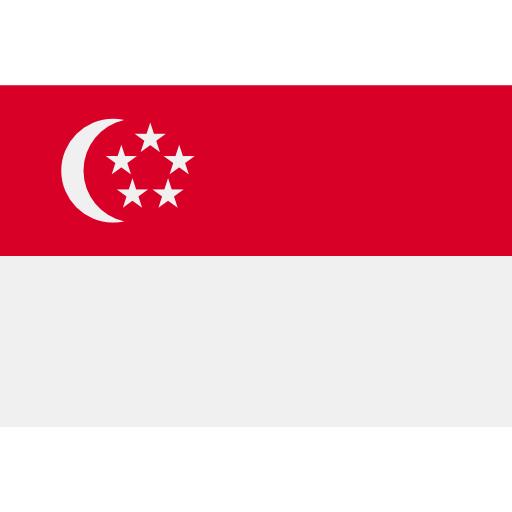 Kurz SGD Singapore Dollar